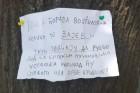 Preteća poruka Tatjani Vojtehovski zalepljena na drvetu: Streljaću ustašku kopilad