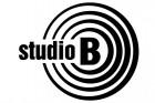 Studio B treba da plati 120.000 dinara Saši Raduloviću