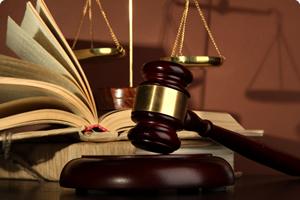 profesionalno pravo